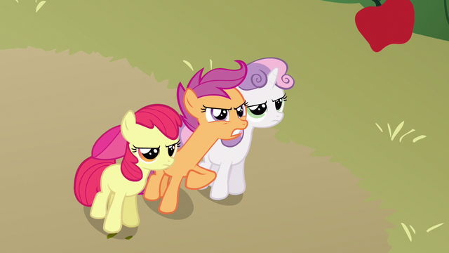 File:Scootaloo this is our! S3E4.png