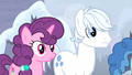 Sugar Belle and Double Diamond look across the bridge S5E2.png