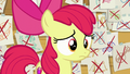 Apple Bloom in blank embarrassment S6E4.png