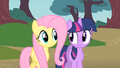 Fluttershy and Twilight thinking where to look for Philomena S01E22.png