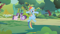 Rainbow with a Parasprite beard S01E10.png