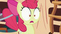Apple Bloom shocked 2 S2E06.png