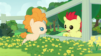 """Bright Mac """"hold a buttercup under your chin"""" S7E13"""