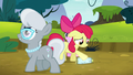 Apple Bloom feeling put down S5E4.png