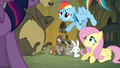Rainbow Dash 'Fluttershy spoke with the woodland critters' S3E03.png