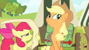 Apple Bloom reading checklist S4E17.png