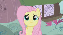 Fluttershy is not sure S1E7