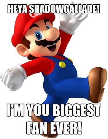 File:FANMADE Super Mario Meme.jpg