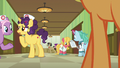 Nurse ponies and patients in the hospital hallway S6E23.png