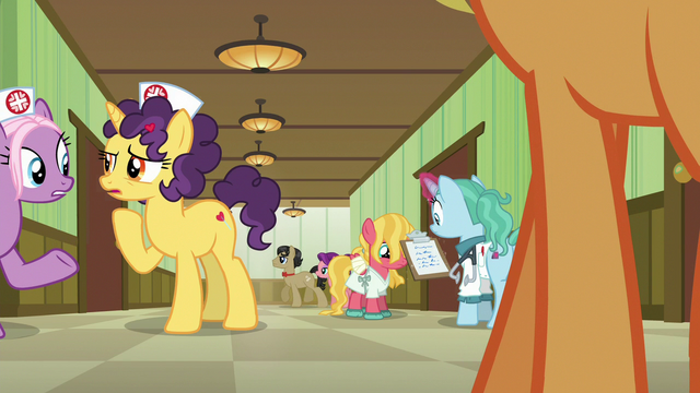 File:Nurse ponies and patients in the hospital hallway S6E23.png