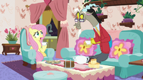"""Fluttershy awkward """"yes, we are"""" S7E12"""