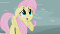 Fluttershy scared by Gilda S1E05.png