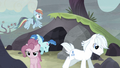 Secret passage leads ponies outside S5E2.png