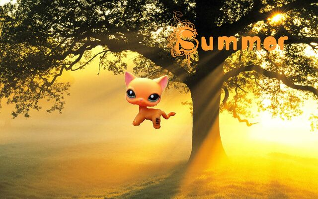 File:Summer.jpg