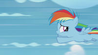 Rainbow Dash flying away from Twilight S5E25