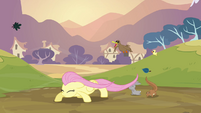 Determined Fluttershy S02E22