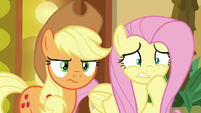 Applejack puts on a determined face S6E20