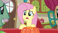 "Fluttershy ""oh, no!"" S6E11.png"