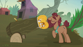 Hooffield stallion loads hollow pumpkin into a cannon S5E23.png