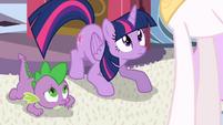 Spike and Twilight looks up at Celestia S4E01