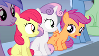 "Scootaloo ""but he wouldn't listen"" S4E24"