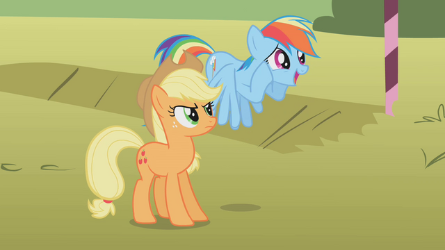 File:Applejack looking at an excited Rainbow Dash S01E13.png