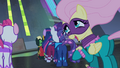 Fluttershy 'Maybe we should just come back later' S4E06.png