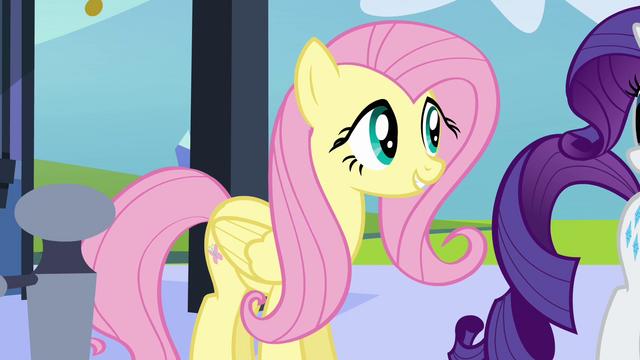 File:Fluttershy close up S03E11.png