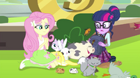 Fluttershy has a lot of animals EG3b