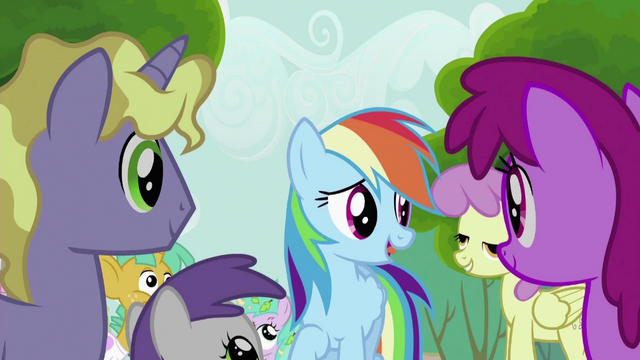 File:Rainbow Dash Speaks to the Crowd S2E8.png
