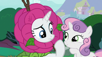 Rarity confused; Sweetie Belle amused S7E6