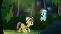 Daring and Rainbow in the forest S4E04.png
