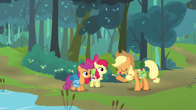 File:Applejack 'You packed bug spray' S3E06.png