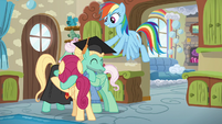 Rainbow puts cap back on Zephyr's head S6E11