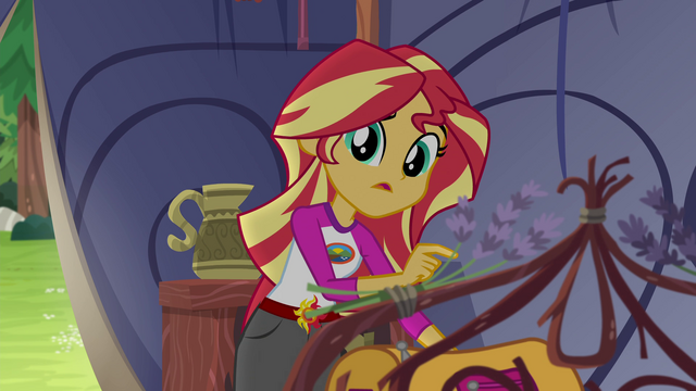 "File:Sunset Shimmer ""that was weird back there"" EG4.png"