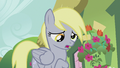 Derpy says okay S5E9.png