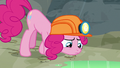 Pinkie follows hoofprints to pool of eel saliva S7E4.png