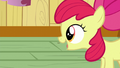 "Apple Bloom ""Are you girls thinkin' what I'm thinkin'?"" S6E4.png"