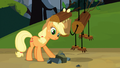 Applejack and fake timberwolf S03E09.png