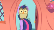 Twilight leaving with Owlowiscious S1E24