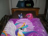 Pinkie Pie and Twilight plushies under the blanket