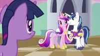 Shining Armor with Princess Cadance S02E25