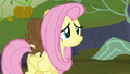 Fluttershy smiling with relief S5E23.png