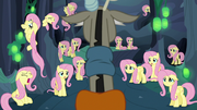 Discord discovers a lot of Fluttershys S6E26
