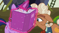 Ma Hooffield looking at Twilight's portfolio S5E23.png