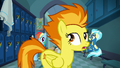 Spitfire crossing in front of Rainbow and Misty S6E24.png