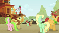 Raise This Barn family square dance S3E08.png