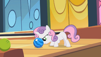 Sweetie Belle about to push bowling ball S2E06