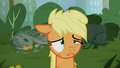Applejack dirty and dizzy S5E16.png