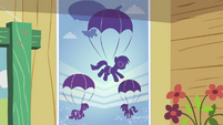 Skydiving poster S3E11